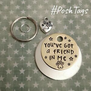You've got a friend in me cat dog pet ID tags handmade stamped PoshTags