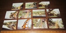 Lot of 11 ROLLER COASTER on RIDE Photographs YELLOW 1980's COLOR Vintage PHOTO