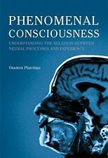 Phenomenal Consciousness: Understanding the Relation between Experience and Neur