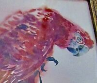 vintage Listed Artist Painting Tom A. Robertson Red Parrot GESSO Frame