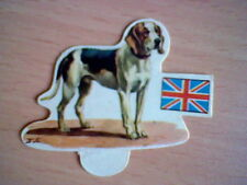 HARRIER 70´S SPANISH PROMOTIONAL CARD DOGS PANRICO ORIGINAL UNSTICKED