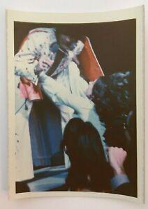 ELVIS PRESLEY ORIGINAL 40+ YEAR VINTAGE CANDID RARE kodak UNPUBLISHED PHOTO