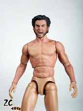 ZC Toys 1/6 Muscular Figure With Wolverine Head Roar Hugh Jackman TTM19 USA