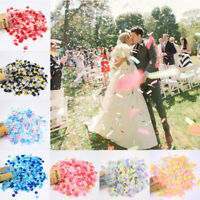 Confetti Push Pop Biodegradable Heart Birthday Wedding Party Flutter Decorations