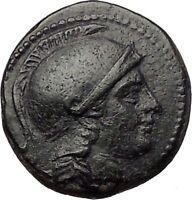 SELEUKOS II Kallinikos 246BC Seleukid Athena Apollo Ancient Greek Coin i57708