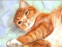 BCB Orange Tabby Cat Waking Up on Quilt Print of Painting ACEO 2.5 x 3.5 Inch