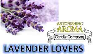 LAVENDER LOVERS COLLECTION Soy Wax Clamshell Break Away tart melt candle