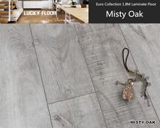 12mm Laminate flooring/Timber flooring/floor/Floating Floor (Misty Oak)