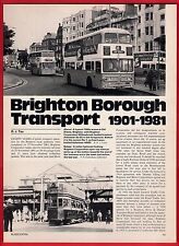 Buses Magazine Extract ~ Brighton Transport 80 Years - History & 1981 Fleetlist