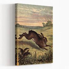 Canvas Vintage Animals Art Prints