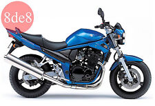 Suzuki GSF 650 Bandit (2004) - Workshop Manual on CD (In Italian)