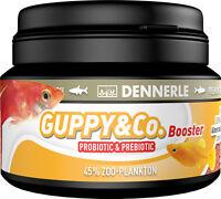 Dennerle Premium Fish Food: Guppy & Co. 100ml for Guppies, Platies, Mollies