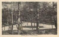 Cartolina di Coredo (Predaia), bosco - Trento, 1935