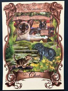 Guinea 2013 / Animals - Domestic Cats / 1v minisheet MNH