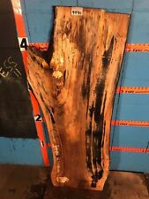 """#9990   1 5/8"""" THICK  black line spalted maple live edge slab"""