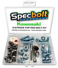 Kawasaki KX500 Top End Engine Bolt Kit KX 500 (Zinc)