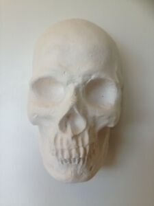 Undecorated blank hand cast plaster mask skull wall art paint your own
