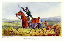 GREYHOUNDS COURSING HUNTING HARES RABBITS, FINDING THE RABBIT SOHO ANTIQUE PRINT
