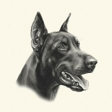Dog Show Ring Number Clip Pin Breed - Dobermann (Crop Eared)