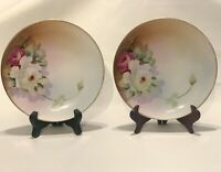 Pair Of Meito China Hand Painted Floral 6 Inch Plates- Made In Japan