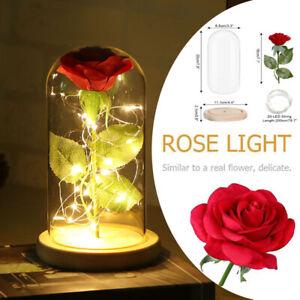 Rose Geschenk für Frauen Ewige Rose im glas Konservierte Rose mit Licht (Rot)