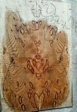 "Cluster burl oak"" guitar bass craft exotic figured wood drop top, luthier 2"