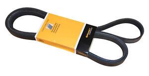 Serpentine Belt-Power Steering CRP PK060966