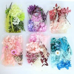 Aromatherapy Candle Dried Flower Plant 1Box Colorful Real Flowers Craft Supplies