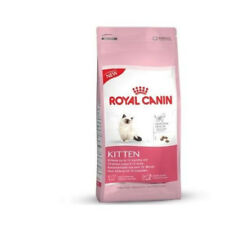 Food Cats Royal Canin Kitten (Cat Kitten 4 To 12 Months And Female Gestantes)