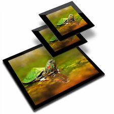 Glass Placemat  & 2x Coaster  - Little Turtle Terrapin Swimming  #16940