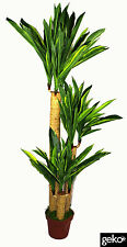 Realistic Foliage Potted Artificial  Extra Large 135cm Dracaena Yukka Plant Tree