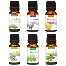 100% PURE & NATURAL ESSENTIAL OILS Gift Kit  Certified 10ML FREE SHIPPING