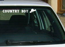 STICKER AUTOCOLLANT COUNTRY TUNING GOLF CLIO 206 MEGANE