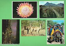 #D247.  25   UNSENT  POSTCARDS  FROM  SOUTH  AFRICA