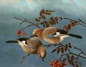 Birds by Ferdinand Wright