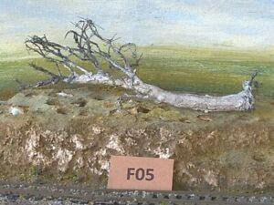 AUSTRALIAN MODEL Fallen Dead  GUM TREE   HO  OO  Lot F05
