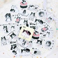 45PCS Cute Cat in bottle Mini Paper Stickers DIY Diary Album Stick Decor Lot HU