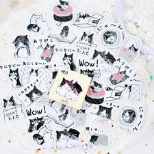 45PCS Cute Cat in bottle Mini Paper Stickers DIY Diary Album Stick Decor Lot QWH