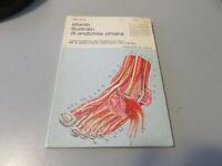 Atlante Ilustrado Por Anatomía Humana volume3 Klima Milan Franco Muzzio Editor