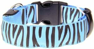 Blue Zebra Striped LED Collar; Large Fits Neck Size 17 1/2 In to 20 1/4 In