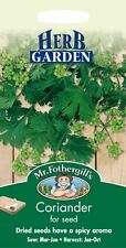 Mr Fothergills - Pictorial Packet - Herb - Coriander - 150 Seeds