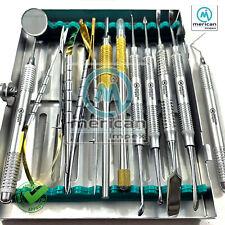 Dental Micro Oral Surgery Instruments Kit 13 Pcs Periosteal Prichard Buser Molt9
