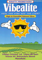 Vibealite Ultimate DJ Set Collection 291 sets on USB 64gb Stick MP3 Rave!!