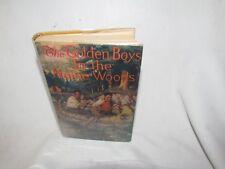 VINTAGE CHILDREN'S SERIES BOOK DJ GOLDEN BOYS IN THE MAINE WOODS 1923 A L BURT