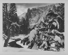 Ansel Adams Art Photographs