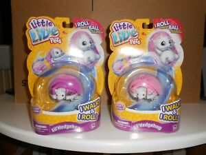 Little Live Pets - Lil' Hedgehog, X 2--PINKY PETALS + PINNY POPCORN--NEW