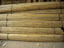 Canne di Bamboo per orto - 150 - 180 - 210 - 240 cm - Bambù - tutori canna