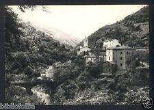 Cartolina - BIAGIONI (Bologna) Fiume Reno e Ponte medievale -VG 1971 Granaglione