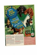 Vintage 1953 Canada Dry Cute Puppies Boxers Beagles Dachshunds Cockers Ad Print