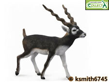 CollectA BLACKBUCK solid plastic toy wild zoo animal antelope * NEW 💥